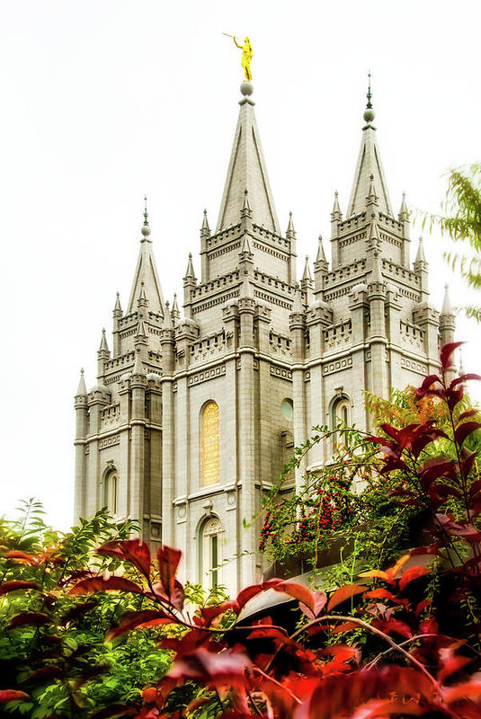 Print featuring the photograph Slc Temple Angle by La Rae Roberts