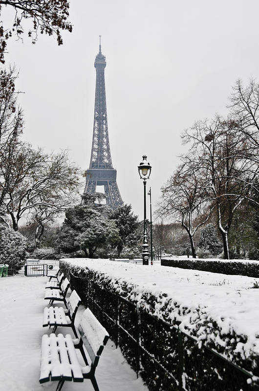 Vertical Art Print featuring the photograph Snow Carpets Benches And Eiffel Tower by Jade and Bertrand Maitre