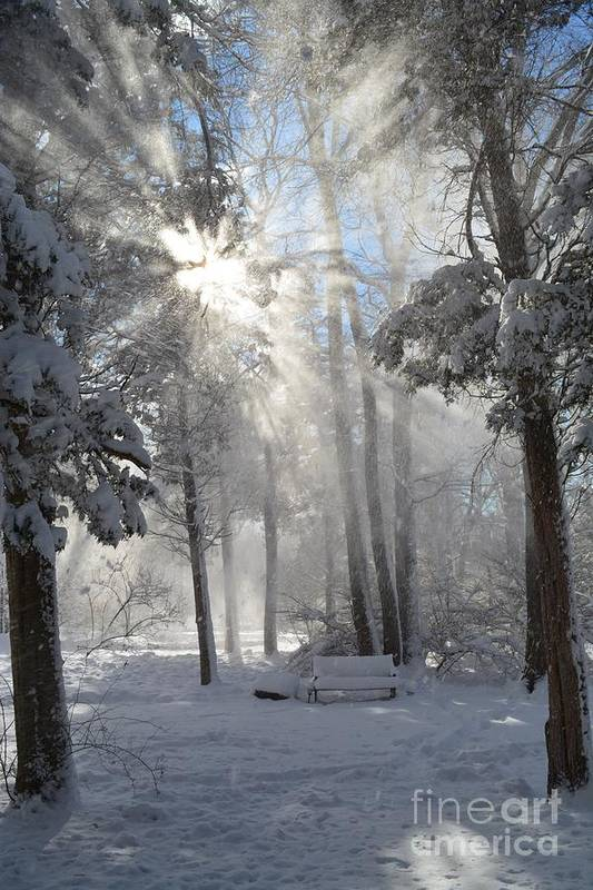 Sunburst Art Print featuring the photograph Snowflakes And Sunbeams by Dani McEvoy