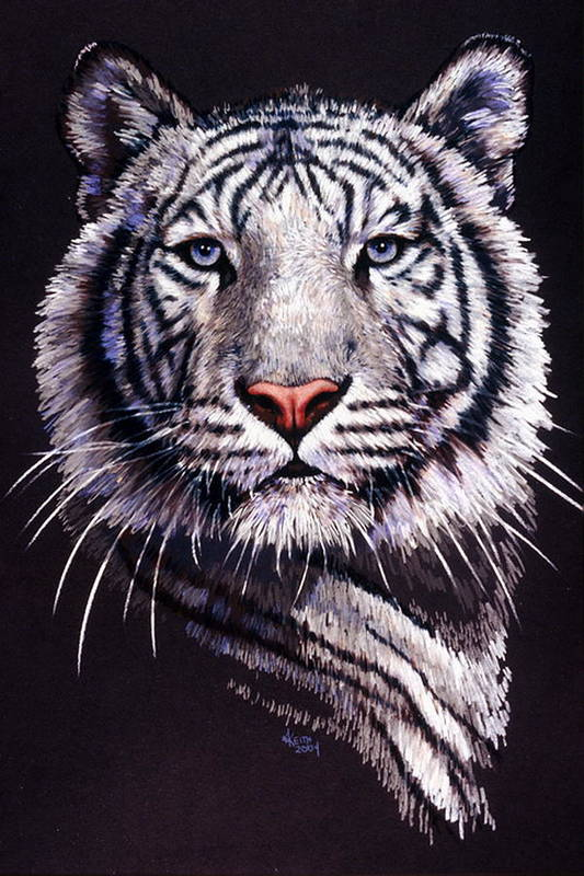 Tiger Art Print featuring the drawing Sorcerer by Barbara Keith