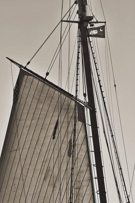 Spirit Of South Carolina Art Print featuring the photograph Spirit Of South Carolina Schooner Sailboat Sail by Dustin K Ryan