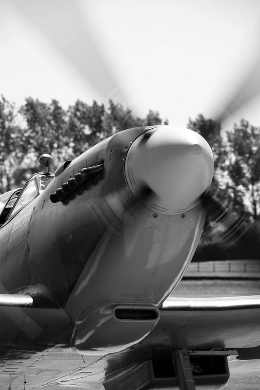 Supermarine Spitfire Tr Ix Art Print featuring the photograph Spitfire Nose by Robert Phelan