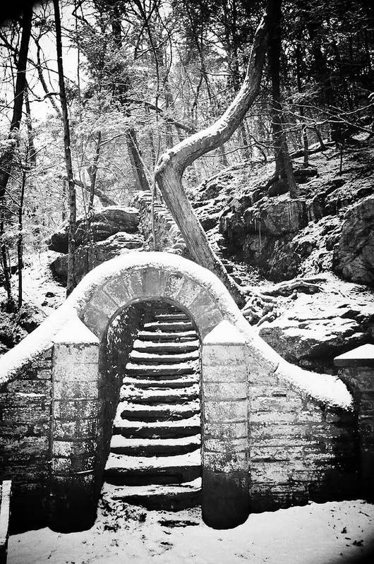 Philadelphia Art Print featuring the photograph Steps Along The Wissahickon by Bill Cannon