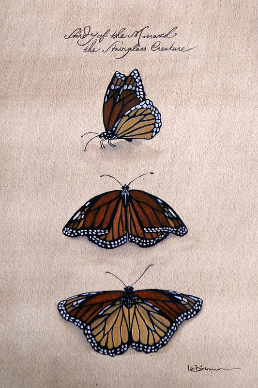 Monarch Print featuring the mixed media Study Of The Stain-glass Creature by Leslie M Browning