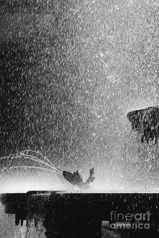 Summer Art Print featuring the photograph Summer Rain by Hideaki Sakurai