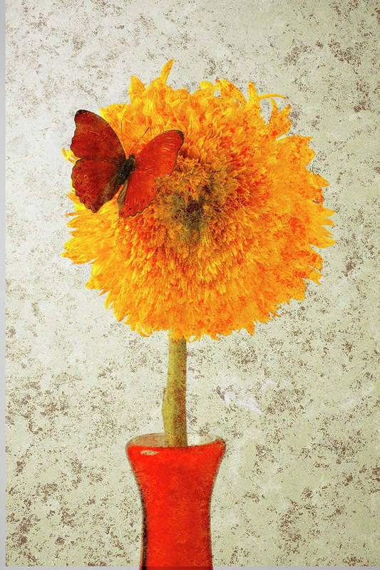 Red Butterfly Sunflower Yellow Abstract Art Print featuring the photograph Sunflower And Red Butterfly by Garry Gay