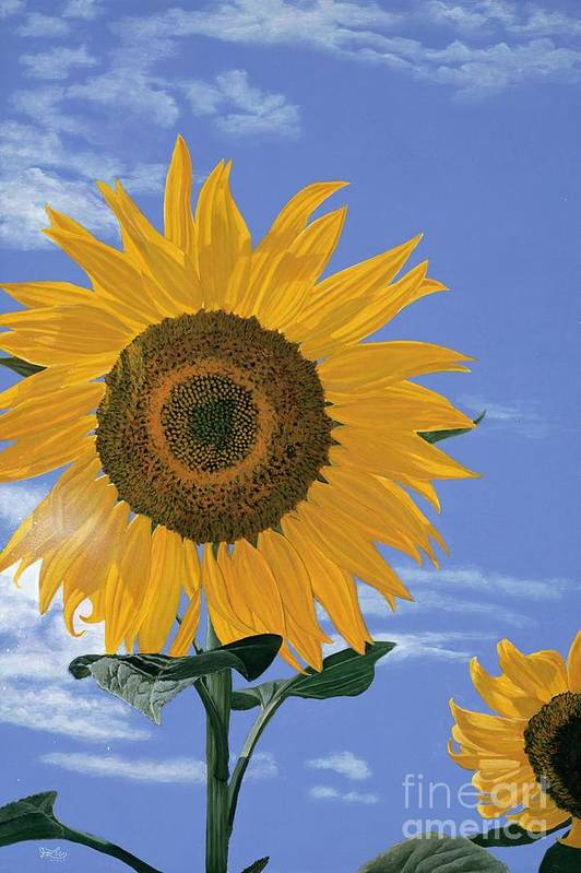 Sunflower Art Print featuring the painting Sunflower by Jiji Lee