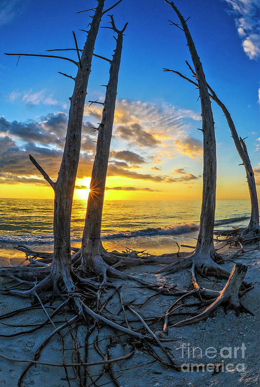 Sunset Art Print featuring the photograph Sunset From Lovers Key, Florida by Vito Palmisano
