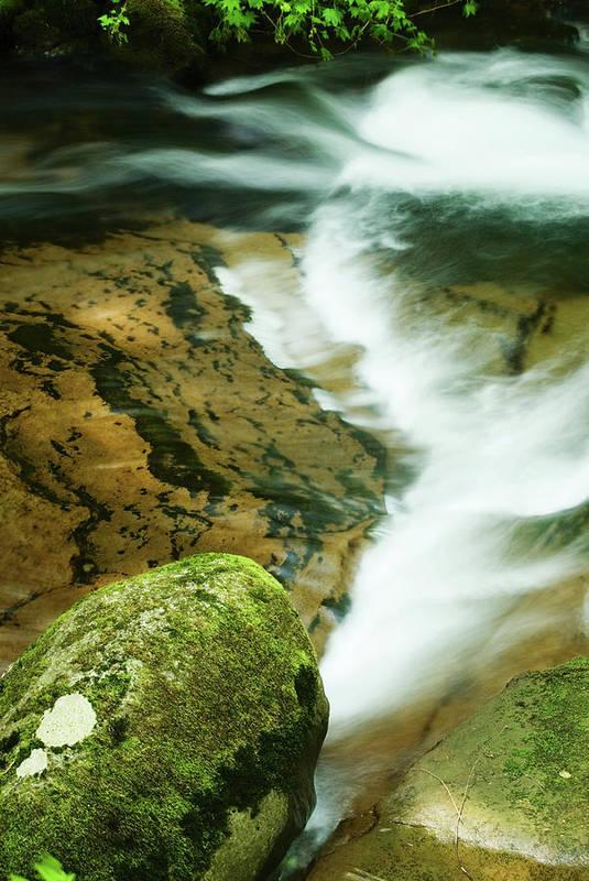 Oregon Art Print featuring the photograph Sweet Creek by Renee Hong