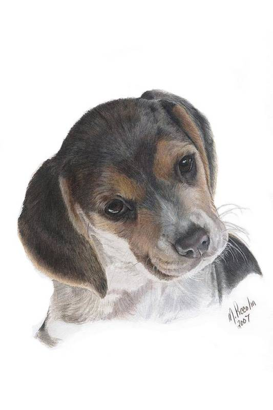 Dogs Art Print featuring the painting Teagan by Marlene Piccolin