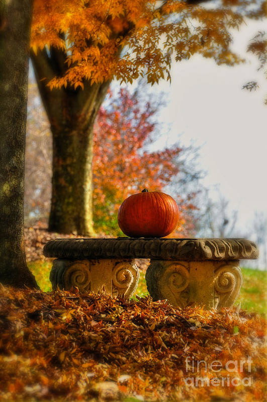 Pumpkin Art Print featuring the photograph The Last Pumpkin by Lois Bryan
