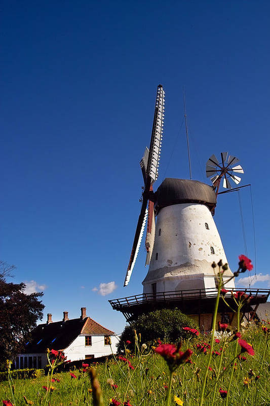 Windmill Art Print featuring the photograph The Mill At Dybbol by Robert Lacy