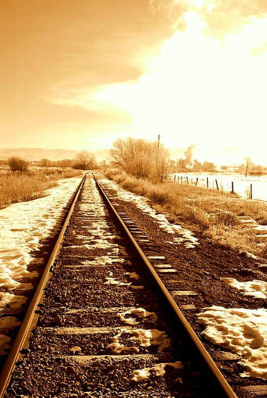 Railroad Art Print featuring the photograph Tracks by Caroline Clark
