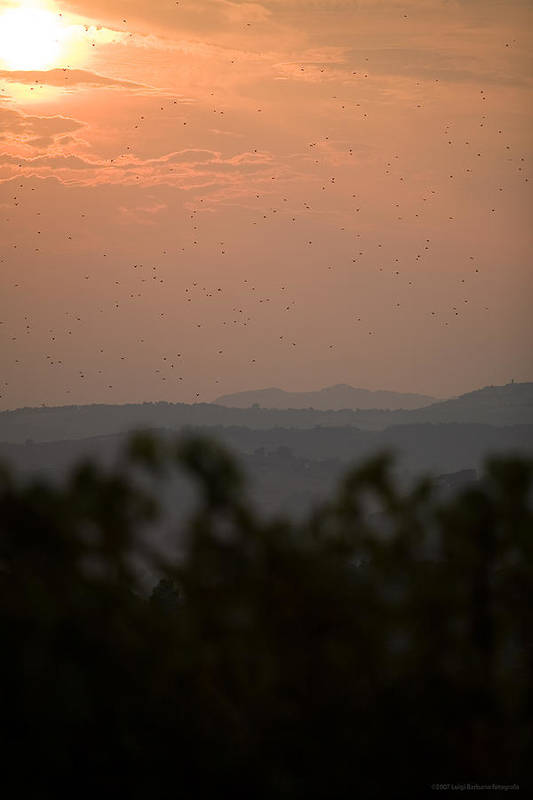 Italy Art Print featuring the photograph Tuscany Sunset 1 by Luigi Barbano BARBANO LLC