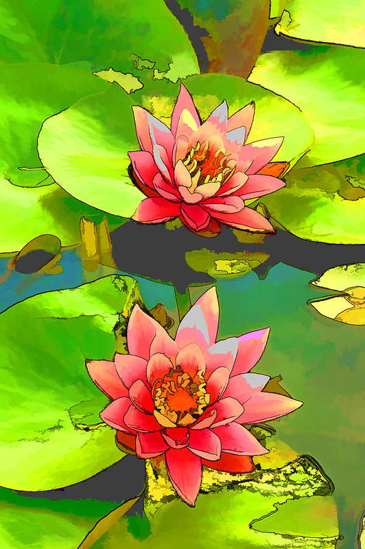 Aquatic Art Print featuring the painting Two Pink Blooming Water Lilies by Jeelan Clark