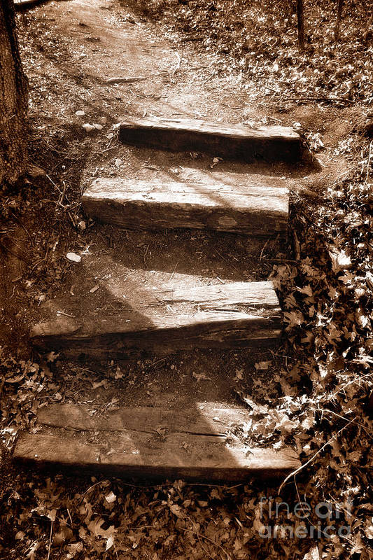 Step Art Print featuring the photograph Untitled by Jeannie Burleson