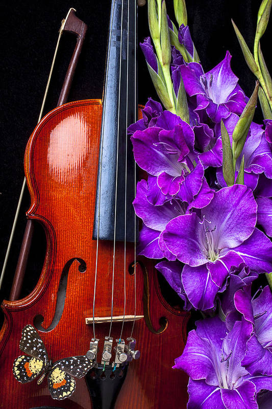 Violin Art Print featuring the photograph Violin And Purple Glads by Garry Gay