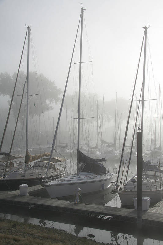 Sailboats Art Print featuring the photograph Waiting On The Fog by Laurie With