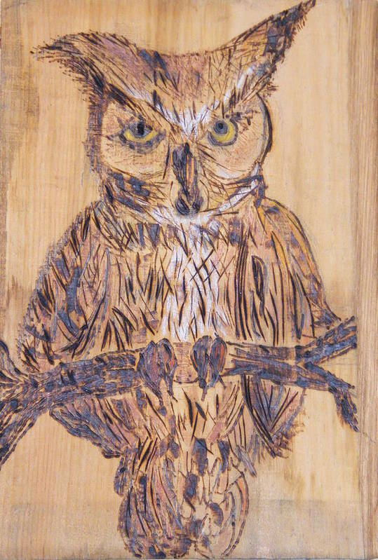 Owls Woodburns Nature Art Print featuring the pyrography Watching You by Margaret G Calenda