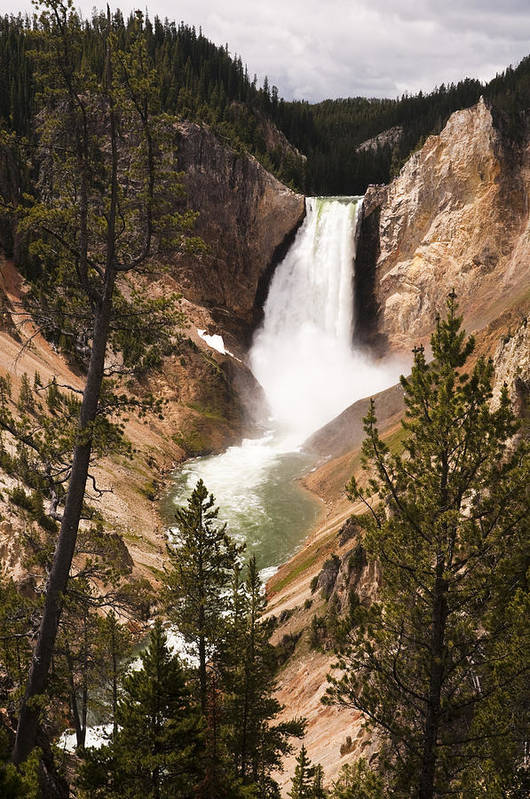 Yellowstone Art Print featuring the photograph Waterfall Of Yellowstone by Chad Davis