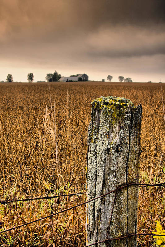Whitevale Art Print featuring the photograph Weathered Wire.. by Russell Styles