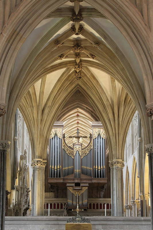 Wells Cathedral Art Print featuring the photograph Wells Cathedral Pipe Organ by Lauri Novak