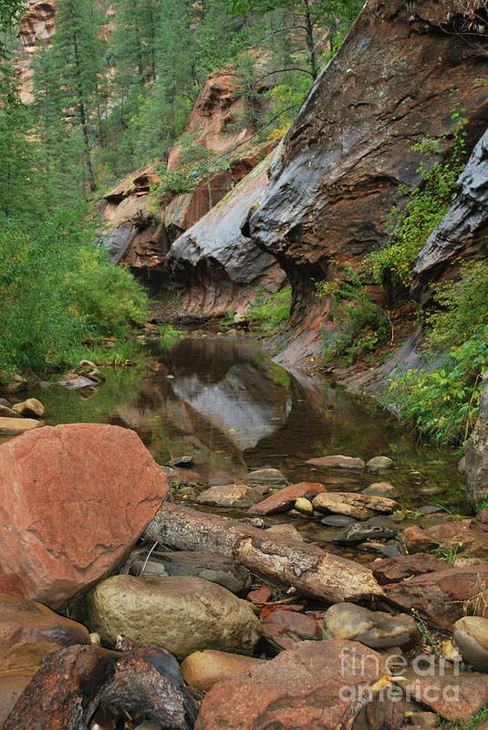 West Fork Trail River And Rock Vertical Sedona Arizona Oak Creek Canyon Wall Water Tree Bush Brush Leaf Pine Reflect Reflection Print featuring the photograph West Fork Trail River And Rock Vertical by Heather Kirk