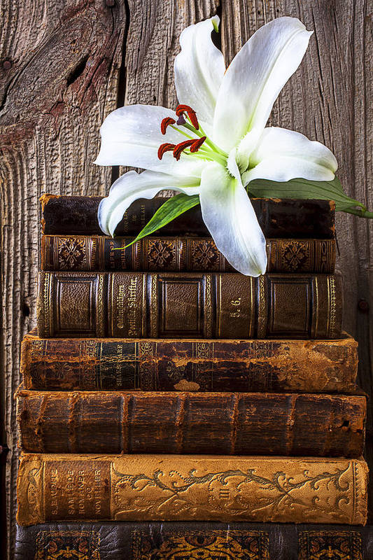 White Lily Art Print featuring the photograph White Lily On Antique Books by Garry Gay