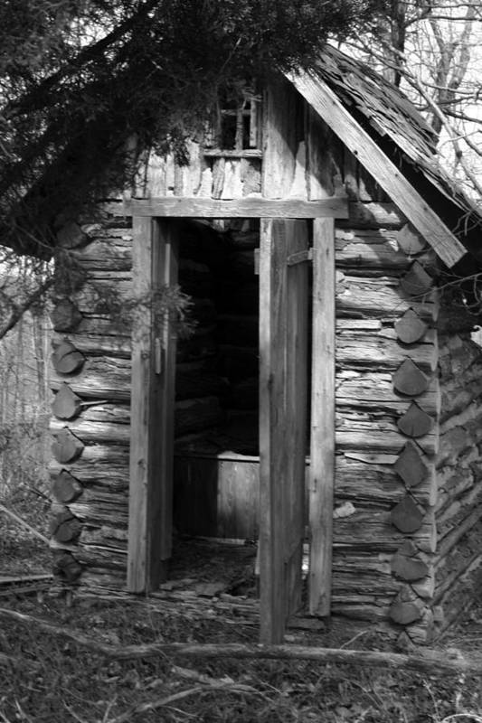 Ansel Adams Art Print featuring the photograph Winslow Log Outhouse by Curtis J Neeley Jr