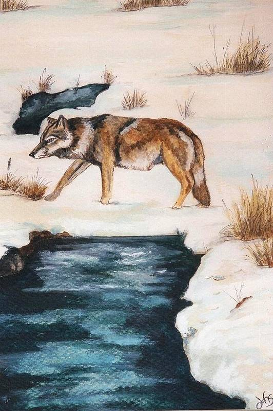 Coyote Art Print featuring the painting Winter Coyote by Debra Sandstrom