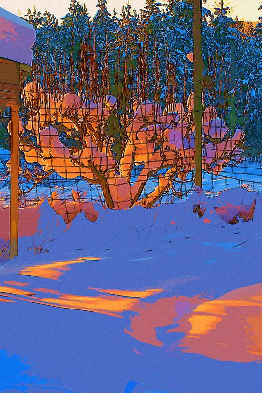 Snow Art Print featuring the digital art Winter Pear by Robert Bissett