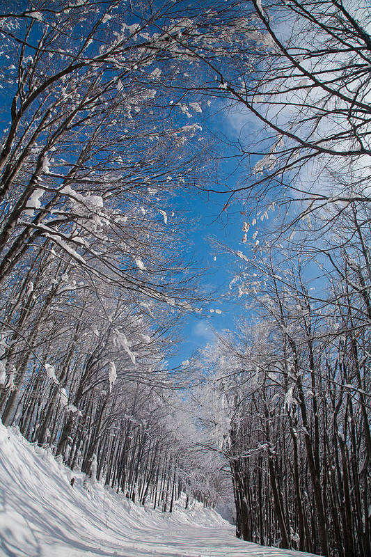 Mountain Art Print featuring the photograph Winter Road by Evgeni Dinev