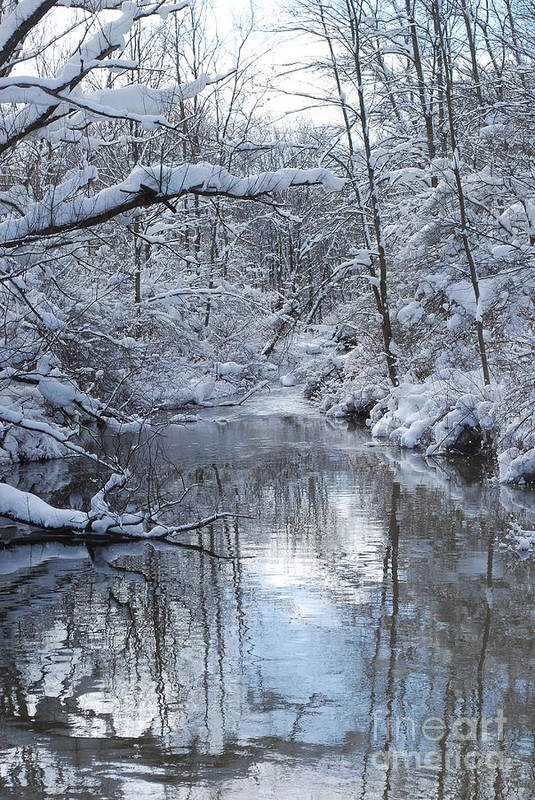 Winter Art Print featuring the photograph Winter Stream by Lila Fisher-Wenzel