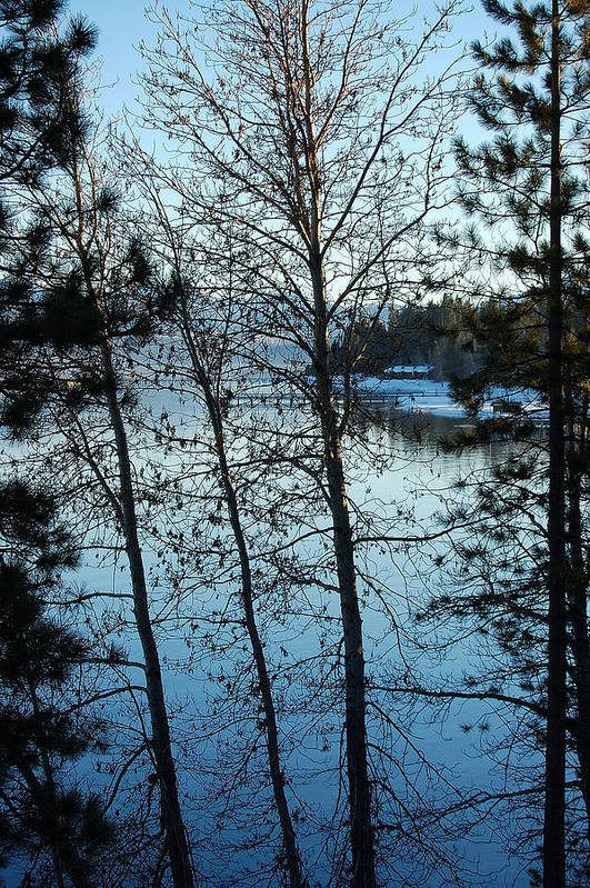 Photography Art Print featuring the photograph Winter Water Blues by Heather S Huston