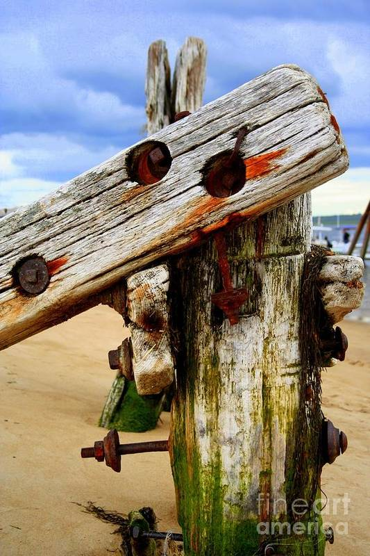 Plum Island Art Print featuring the photograph Wood Structure by John Kenealy