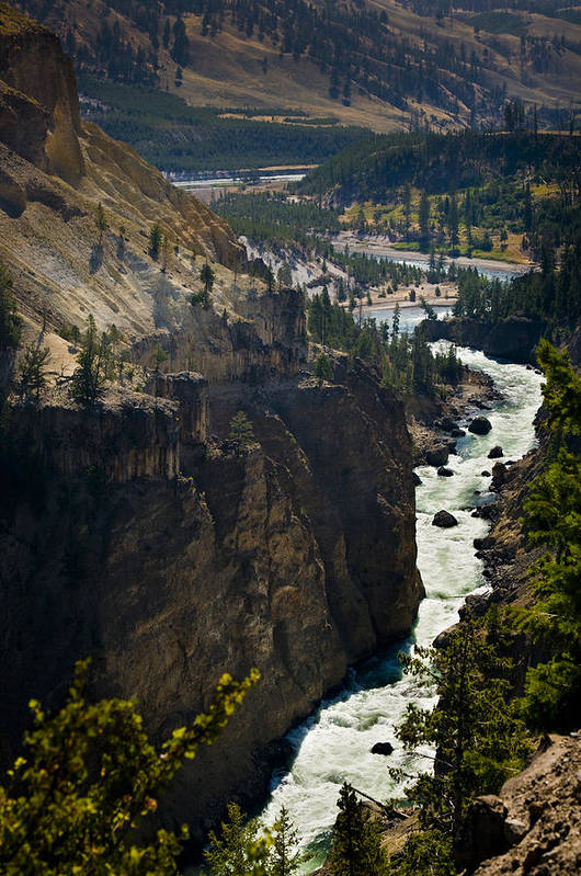 River Art Print featuring the photograph Yellowstone River by Chad Davis