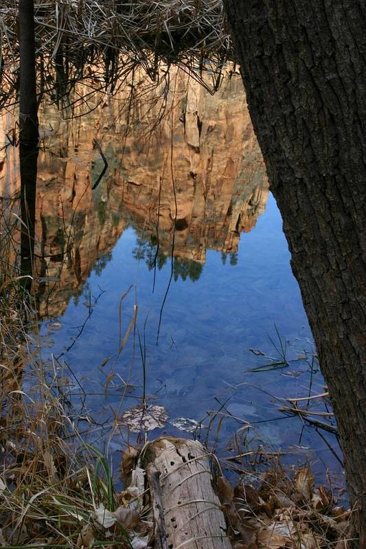 Zion Art Print featuring the photograph Zion Reflections by Nelson Strong