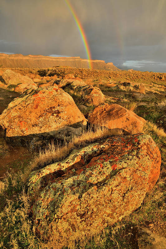 Grand Junction Art Print featuring the photograph Rainbow Over The Book Cliffs by Ray Mathis