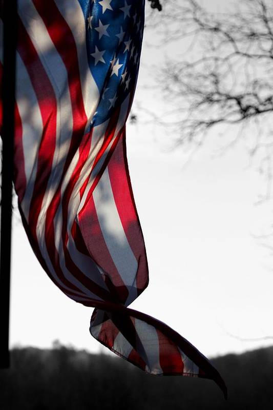 Flag Art Print featuring the photograph Colors In The Wind by Lisa Johnston