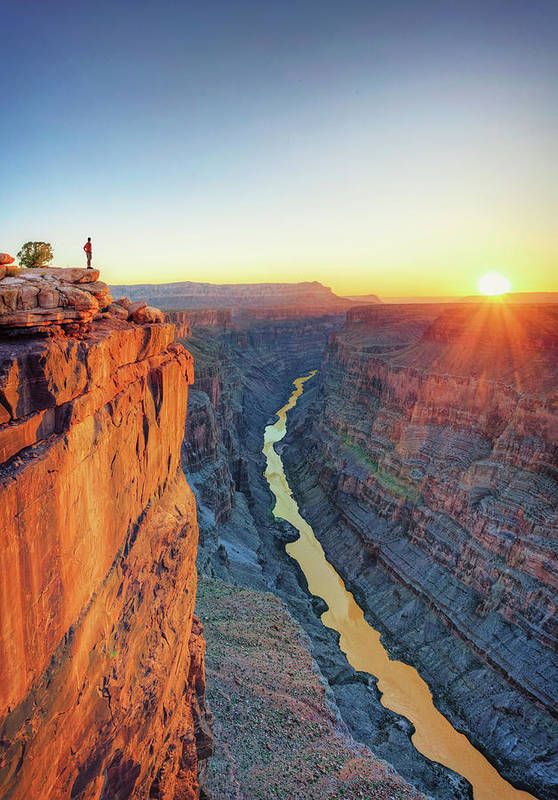 Scenics Art Print featuring the photograph Grand Canyon, Toroweap Lookout by Michele Falzone