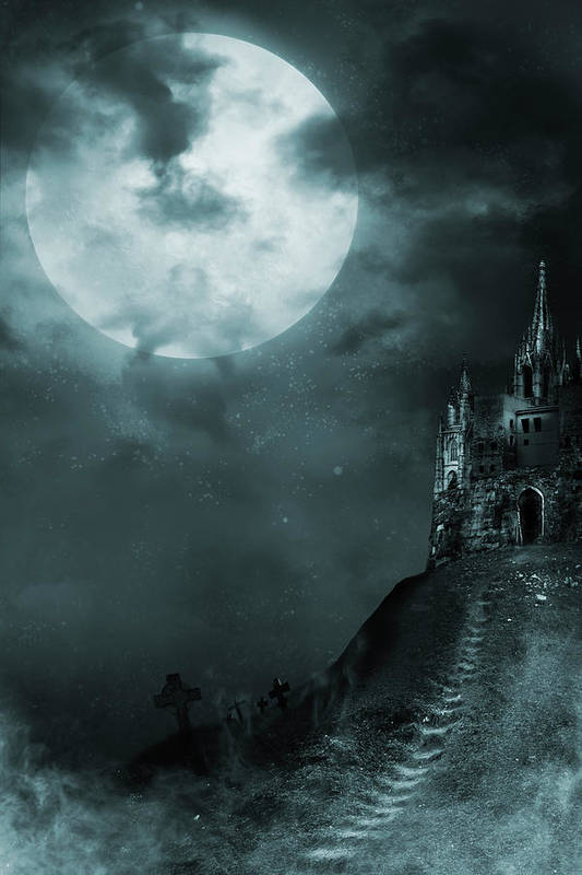 Gothic Style Art Print featuring the photograph Old Castle by Vladgans