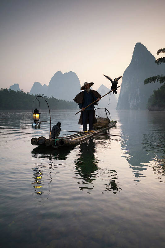 Chinese Culture Art Print featuring the photograph Fisherman With Cormorants On Li River by Matteo Colombo