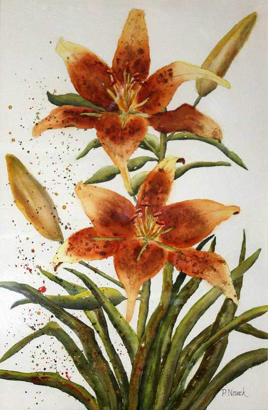 Lilies Art Print featuring the painting Golden Lilies by Patricia Novack