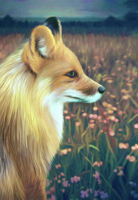 Grass Art Print featuring the digital art Illustration Of Red Fox by Illustration By Shannon Posedenti
