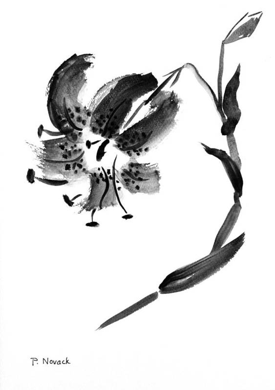 Lily Art Print featuring the painting Lily In Black by Patricia Novack