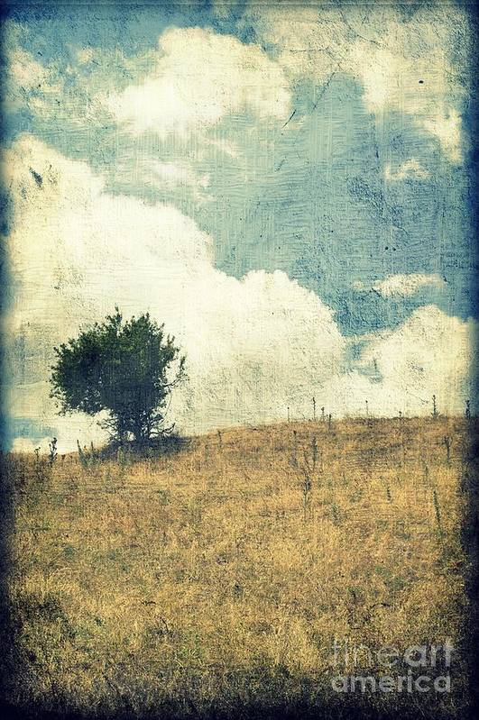 Textured Art Print featuring the photograph Lonely Tree by Ioanna Papanikolaou