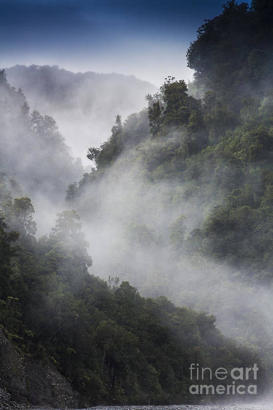 Misty Art Print featuring the photograph Mist in trees at Franz Josef glacier by Sheila Smart Fine Art Photography