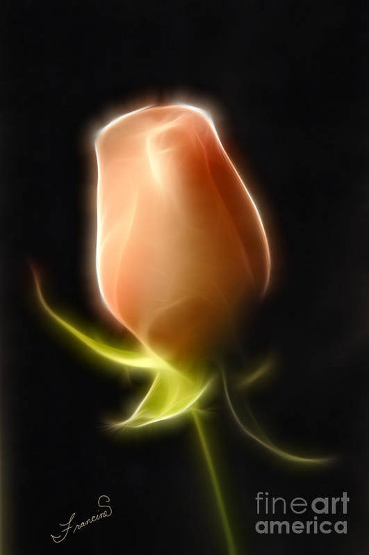 Rose Art Print featuring the painting The Rose by Francine Dufour Jones