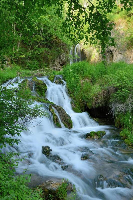Scenics Art Print featuring the photograph Waterfall In Spearfish Cayon South by Groveb