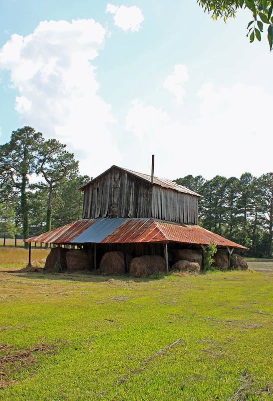 Tobacco Barn Art Print featuring the photograph Clewis Family Tobacco Barn III by Suzanne Gaff